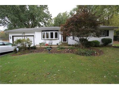 Painesville Township Single Family Home For Sale: 892 Riverside Dr