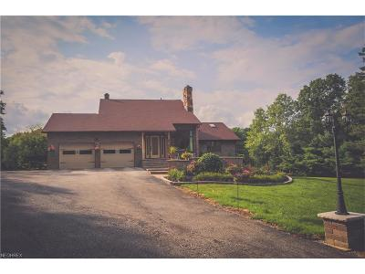 Summit County Single Family Home For Sale: 6290 Riverview Rd