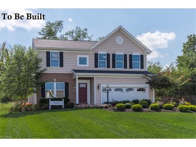 Avon, Avon Lake Single Family Home For Sale: 38760 Country Club Dr