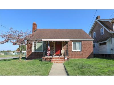 Youngstown Single Family Home For Sale: 85 Fernwood Ave