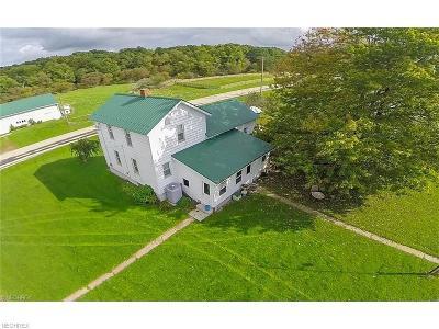 Ashtabula County Single Family Home For Sale: 1073 Stanhope Kelloggsville Rd