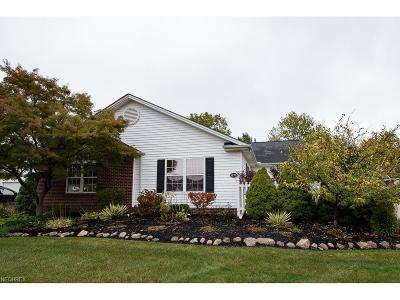 Painesville Township Condo/Townhouse For Sale: 1970 Marsh Ln