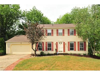 Strongsville Single Family Home For Sale: 16449 Canterbury Dr