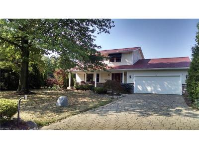 Wadsworth Single Family Home For Sale: 9386 River Styx Rd