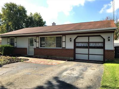 Youngstown Single Family Home For Sale: 4445 Burkey Rd