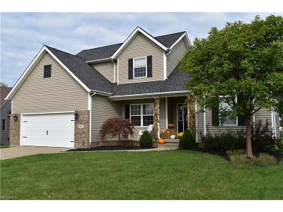 Painesville Township Single Family Home For Sale: 1521 Commodore Cv