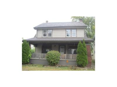 Youngstown Single Family Home For Sale: 133 Wesley Ave