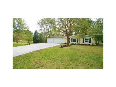 Geauga County Single Family Home For Sale: 8870 North Spring Valley Dr