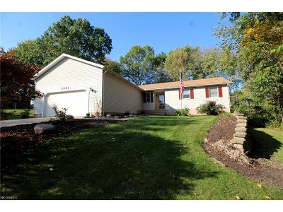 Ravenna Single Family Home For Sale: 3221 Summit Rd