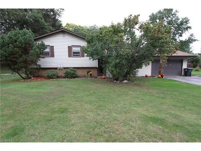 Painesville Township Single Family Home For Sale: 175 Mill Morr