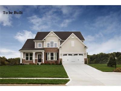 Avon, Avon Lake Single Family Home For Sale: 60 Fairview Dr