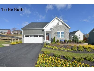 Painesville Township Single Family Home For Sale: 20 Vista Lago Cir