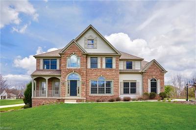 Copley Single Family Home For Sale: 481 Regalstone Ln