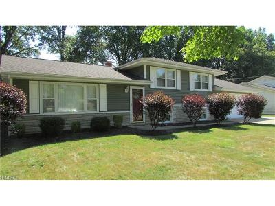 Canfield Single Family Home For Sale: 3503 Orchard Hill Dr
