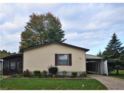 Olmsted Township Single Family Home For Sale: 51 Sycamore