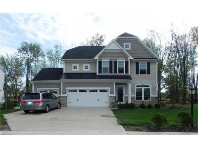 North Ridgeville Single Family Home For Sale: 7399 Fowlers Run