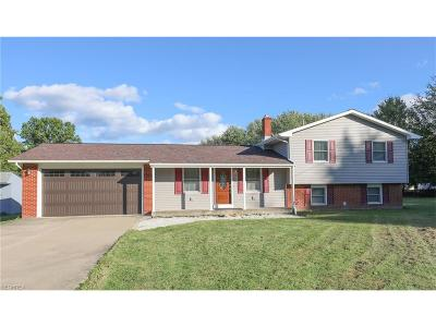 Champion Single Family Home For Sale: 5930 Pat Ann Dr Northwest