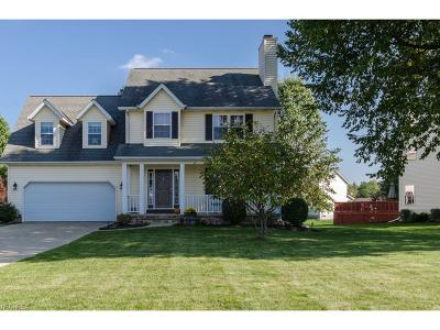 Painesville Township Single Family Home For Sale: 116 Sandstone Dr