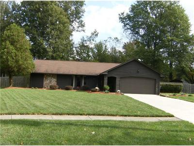North Ridgeville Single Family Home For Sale: 36150 Behm Dr