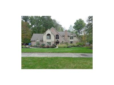 Brecksville Single Family Home For Sale: 8477 Timber Trl