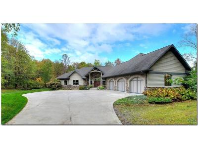 Summit County Single Family Home For Sale: 4601 Hawkins Rd