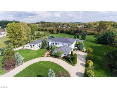 Summit County Single Family Home For Sale: 1463 Willow Ln