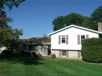 Zanesville Single Family Home For Sale: 3625 Old Wheeling Rd