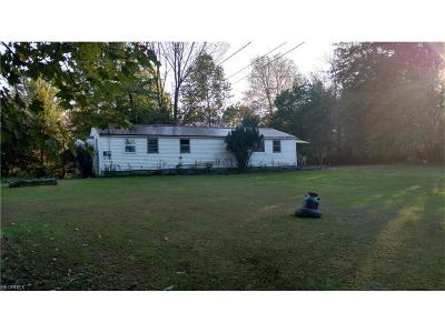 Mantua Single Family Home For Sale: 12461 State Route 44