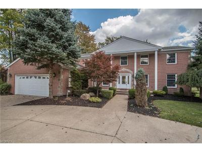Brecksville, Broadview Heights Single Family Home For Sale: 9721 Forge Dr