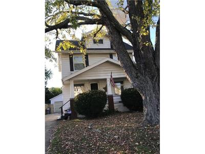 Youngstown Single Family Home For Sale: 44 North Dunlap Ave