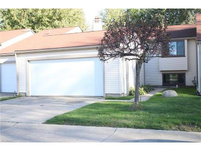Painesville OH Condo/Townhouse For Sale: $119,000