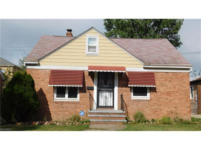 Cleveland Single Family Home For Sale: 4392 West 146th St