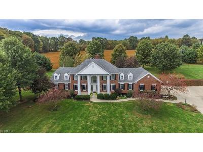 Summit County Single Family Home For Sale: 6562 Hampsher Rd
