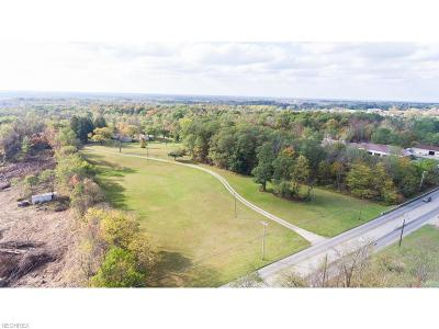 Brunswick Residential Lots & Land For Sale: 2046 Pearl Rd