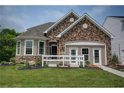 Strongsville Single Family Home For Sale: 12402 Edgebrook Dr