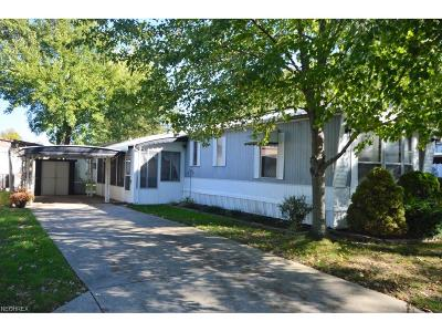 Olmsted Township Single Family Home For Sale: 40 Flagler Dr