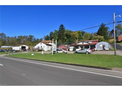 Zanesville Commercial For Sale: 3775 West Pike