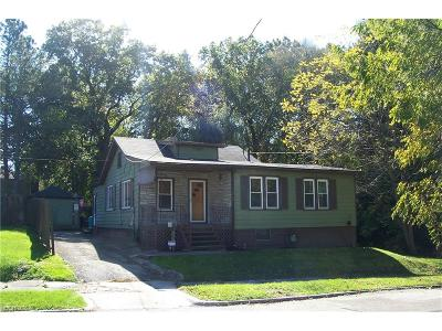 Struthers Single Family Home For Sale: 32 West Haywood Ave