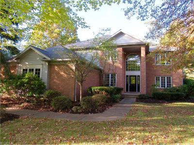 Copley Single Family Home For Sale: 4453 Westview Dr