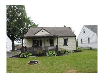 Youngstown Single Family Home For Sale: 441 Manchester Ave