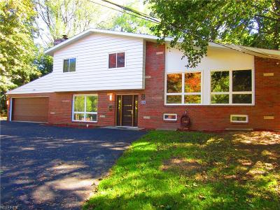 Painesville Single Family Home For Sale: 833 Mentor Ave