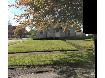 Youngstown Single Family Home For Sale: 879 Detroit Ave