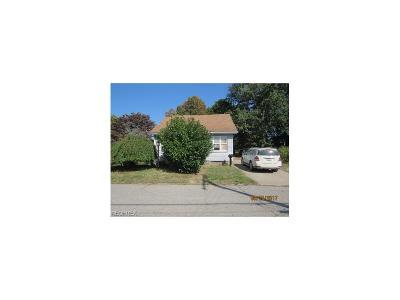 Geneva Single Family Home For Sale: 171 Leslie St