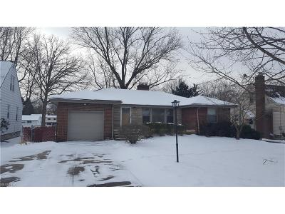 Youngstown Single Family Home For Sale: 465 Brookfield Ave