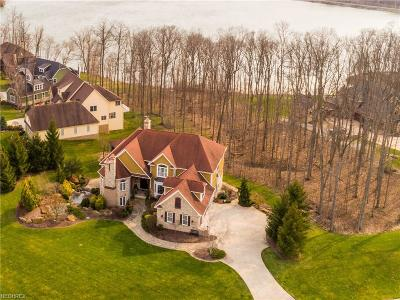 Medina Single Family Home For Sale: 3662 Hunting Run Rd
