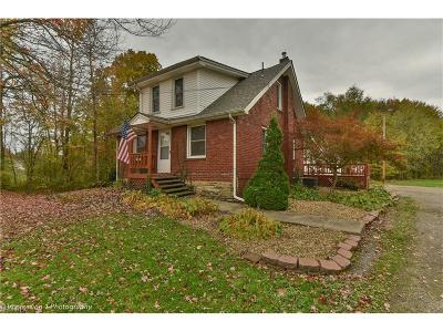 Vienna Single Family Home For Sale: 969 Youngstown Kingsville Northeast