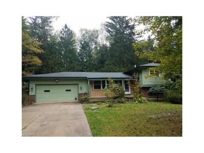 Chagrin Falls Single Family Home For Sale: 18325 Quinn Rd