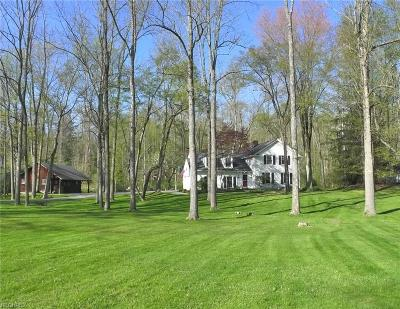 Gates Mills Single Family Home For Sale: 847 Chagrin River Rd