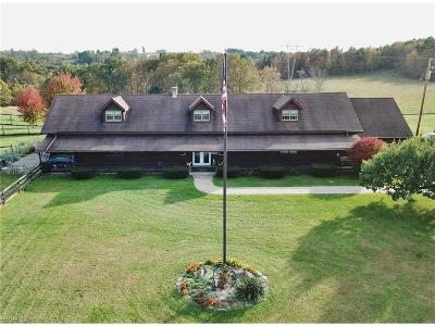 Muskingum County Commercial For Sale: 7950 East Pike