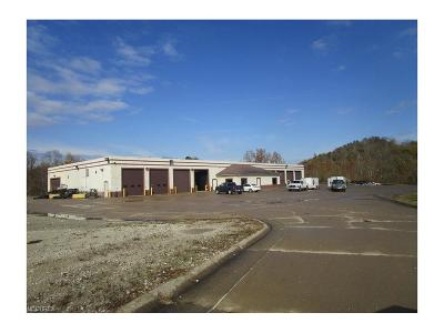 Morgan County Commercial For Sale: 5950 Northeast State Route 60 Hwy Northeast